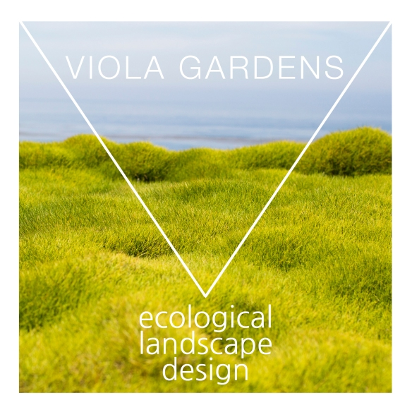 Viola Gardens Logo by Jennifer Toole